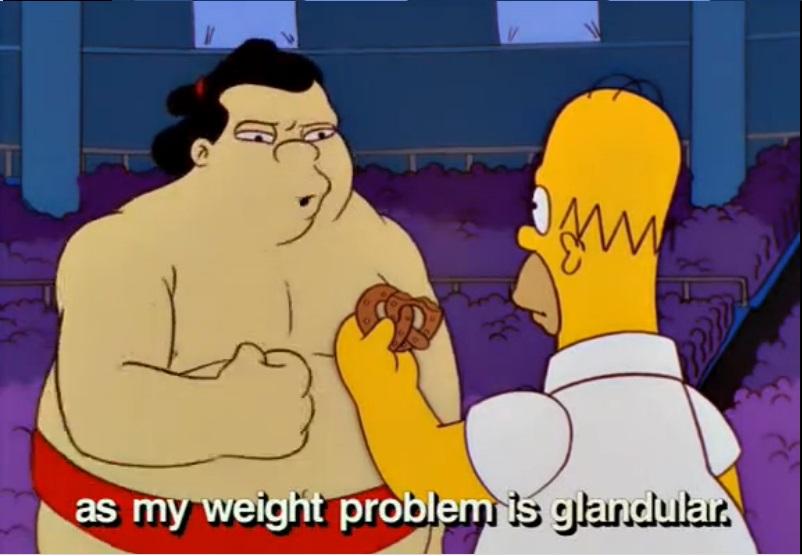 simpsons sumo